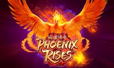 ปก-phoenix-rises